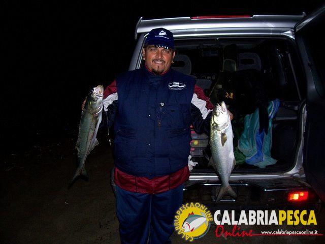 pesce serra pesca di notte