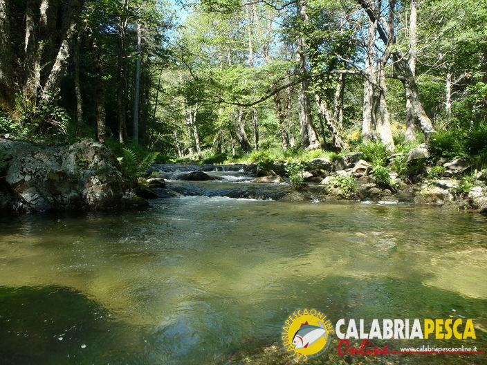 pesca a mosca in Calabria