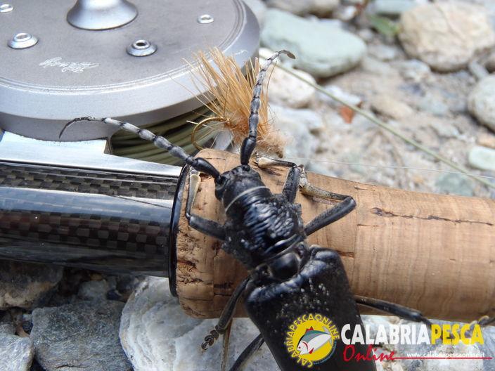 pesca con la mosca in calabria