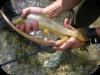 Tecniche di pesca in Acque Interne fiumi e laghi