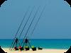 Pesca beachlegering