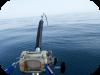 Pesca a Drifting significa gallegiare, andare alla deriva.