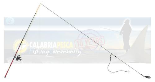 teleferica pesce serra con esca viva
