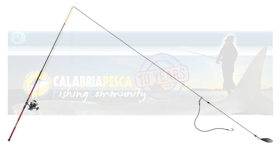 teleferica pesce serra montatura con esca viva