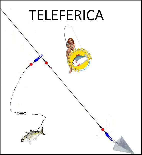 teleferica pesce serra terminale con esca viva