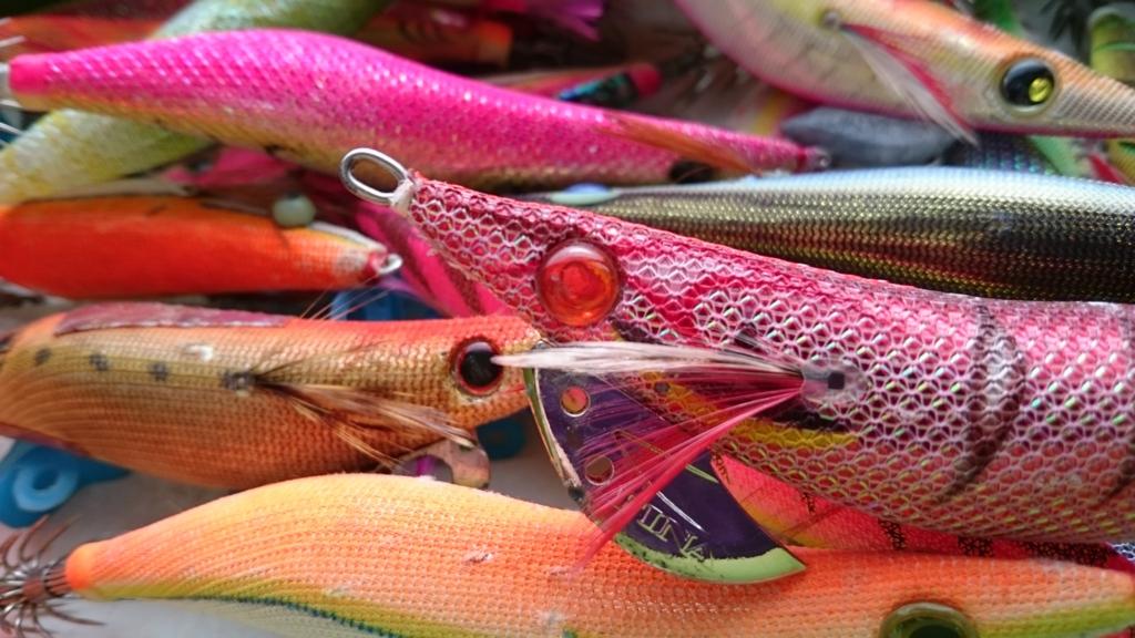 eging-esche-cefalopodi-egi-calamari-seppie