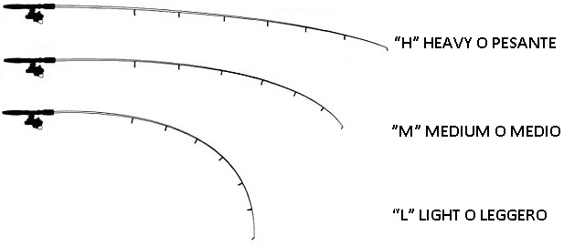 spinning-rods-size