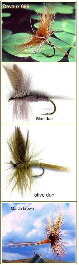 pesca a mosca trota pescare calabria pesca