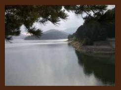 pesca in sila calabria lago AMPOLLINO