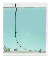 montatura carassio pesca in calabria