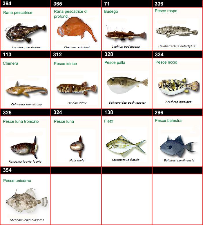 Immagini dei pesci d 39 italia - Pesci comuni in tavola ...